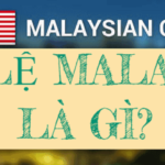 Cách tính tỷ lệ kèo Malaysia và những điều cần lưu ý khi tham gia cá cược