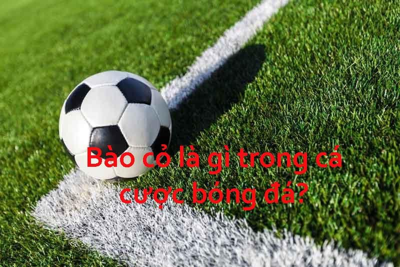 Bào cỏ trong cá cược bóng đá là gì?